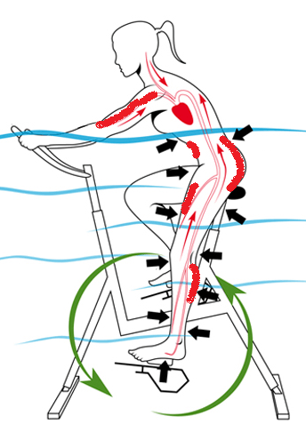 Waterbiking benefits diagram