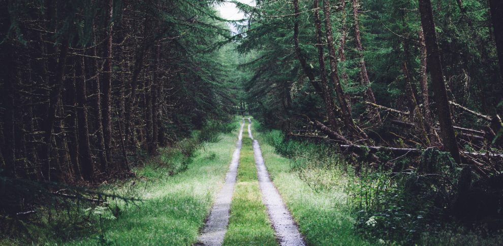 Off the Beaten Path Travel