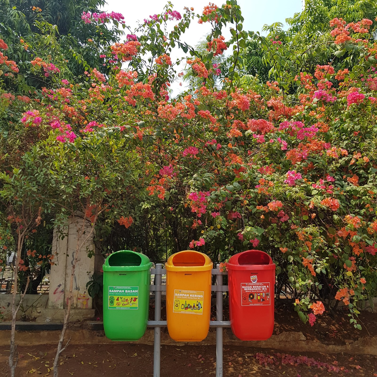5 Vacation tips for Ecotourism - Recycle